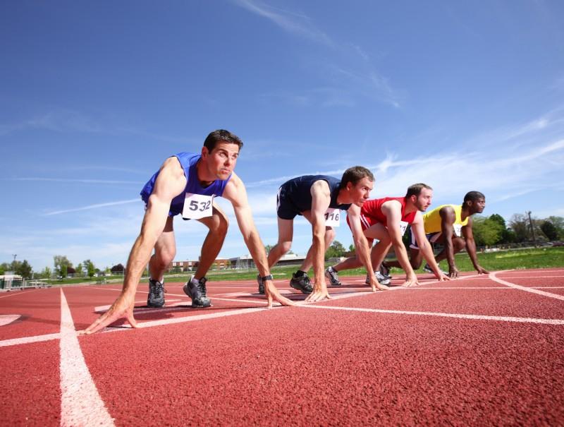 организация спортивных мероприятий
